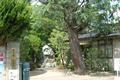 鈴木鎮一記念館は、松本市名誉市民である鈴木鎮一氏が、昭和26年から平成6年まで住んだ邸宅で、スズキ・メソード発祥の地です。かつて、コル トー、グリュミオー、コーガン、利根川進氏等世界の著名人が松本を訪れ、鈴木氏と面会した杜氏の資料等数多くの資料を展示しており、スズキ・メソードの真 髄を知ることができます。