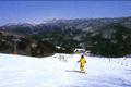 白馬村の東側に位置する唯一のスキー場。隠れ家的なゲレンデで込み合うこともなく、ファミリーやのんびりスキーを楽しみたい人、スキーやスノー ボードをじっくりと練習したい人にうってつけのスキー場です。山頂の歩くスキー&スノーシューコースは白馬村でも屈指のビューポイント。美しい景色を眺め ながらのスノーハイキングにおすすめです。
