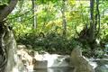 新潟との県境近く、雨飾山や天狗原山などの山懐に抱かれた古湯。早くから湯治場として利用され、山肌に張りつくように温泉集落が形成されていま す。約450年の歴史がある「山田旅館」は、3階建ての木造棟が残る宿で、長期滞在する湯治客も多くいます。他に高温の源泉を持つ「熱泉荘」があります。 また、小谷温泉奥の湯に、日本百名山登山のベースに利用される「雨飾荘」があり、そばには、夏期のみオープンするブナ林に囲まれた野趣あふれる露天風呂が 開設される。