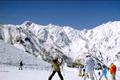 眺望と雪質の良さが魅力の「アルプス平」、スキー場の玄関口で広々した「とおみ」、ファミリーに人気の「いいもり」と特色のある3つのゲレンデ と、バラエティに富んだ16のコースは初級者から上級者まで全てのレベルのスキーヤーを楽しませてくれます。広くて滑りやすいナイターバーンや、24時間 オープンのエスカルプラザなど充実した施設があるのも五竜の魅力です。
