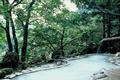 鎌倉時代に湧出したという、数百年の歴史を持つ名湯。山間にひっそりと佇む秘湯は古くから文人墨客に愛されてきました。「白骨」の呼び名も中里介 山の小説「大菩薩峠」に登場したのが発端です。単純硫黄水素の湯は、湯口で透明に近く空気に触れると白濁になります。その効能は「三日入れば風邪をひかな い」といわれるほどです。