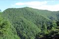 日帰り登山で人気のある山です。山頂より八ヶ岳を望めます。