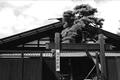 明治時代に短歌の大きな潮流を生んだ太田水穂、島木赤彦、若山牧水らが創作活動を展開する舞台となった広丘地区にあります。本棟造の古民家を移築復元した建物は登録有形文化財です。その館内には、塩尻ゆかりの歌人たちの書簡、歌集などが展示されています。
