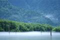 中部山岳国立公園の代表的な景勝地、急峻な山の裾を流れる梓川に沿って開けた標高約1500mの盆地状の広い谷です。独特の地形や多種多様な動植物など自然の各要素の絶妙なバランスをもってつくり上げた類まれな景観と環境を誇り、特別名勝・特別天然記念物にも指定されています。           清冽な水の流れ、さわやかな新緑の河畔林、斜面を覆いつくす針葉樹林帯、そして堂々とそびえ立つ岩稜。豪壮と繊細さを併せ持ち一瞬たりとも同じ姿のない季節の表情は、四季を問わず大自然の感動を伝えてくれます。