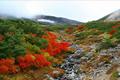 乗鞍岳の東山麓に広がる標高1200m~1800mにかけての一帯が乗鞍高原です。広大な一の瀬園地、原生林や池、湿原、個性的な滝、新緑、紅葉、泉質の異なる4つの温泉、四季の花々など、まさに大自然の魅力あふれるスケールの大きい高原リゾートです。