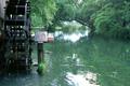 東京ドーム11個分もある日本一広いわさび畑の大王わさび農場。湧水をたたえる蓼川に回る三連水車は、黒沢明監督の映画「夢」の舞台となった場所です。安曇野の原風景が広がり、ゆっくりとした時を過ごすことができます。