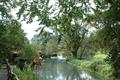 わさび田湧水群・名水百選を有する安曇野の里は、湧水に囲まれた自然豊かな敷地にさまざまな施設が点在しています。周辺はわさび畑、湧水の流れる 小川、ホタルの舞う湧き水散策路、こんこんと湧水が湧き出るわさび田湧水公園などがあり、北アルプスを見ながらゆっくり過ごせます。